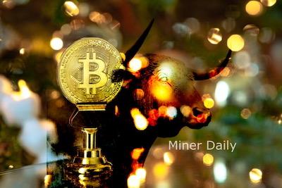 Bitcoin Bull Run 2021